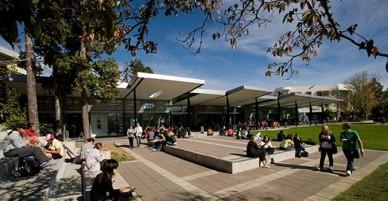 5 Bí quyết giúp bạn hòa nhập nhanh vào môi trường sống ở New Zealand